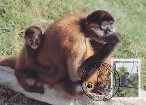 Geoffreys Black Handled Spider Ape Monkey Honduras WWF Stamp FDC Postcard