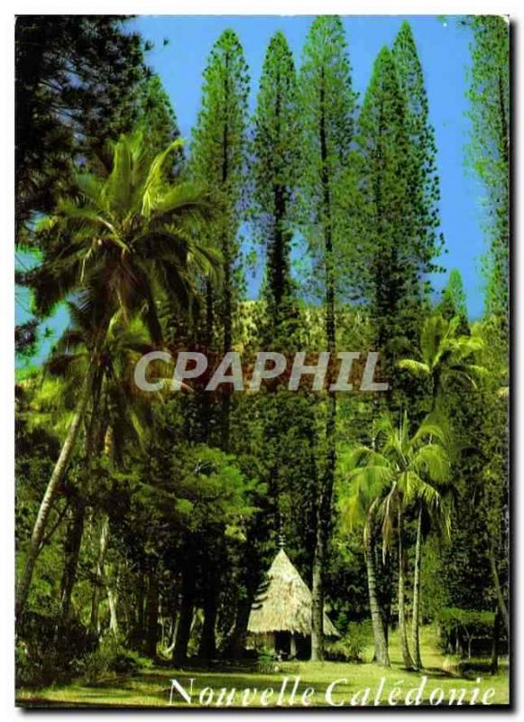 Modern Postcard New Caledonia Tribe of Small Couli