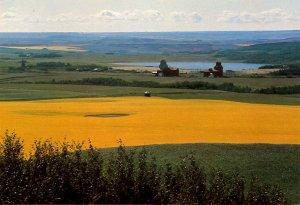 Canada - Saskatchewan. Prongua, A Prairie Scene