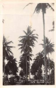New Guinea Cocanut Trees Scenic View Real Photo Antique Postcard J66624