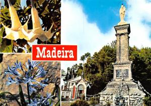 Our Lady of Peace - Madeira