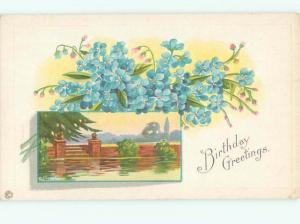 Divided-Back BEAUTIFUL FLOWERS SCENE Great Postcard AA2384