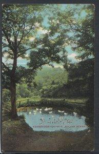 Herefordshire Postcard - Newbridge-On-Wye, Sylvan Scene    T3773