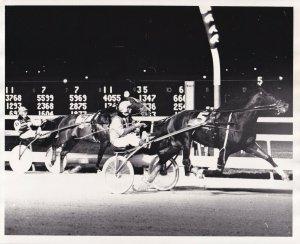 MEADOWLANDS, Harness Horse Race, MATCH HILL winner, 1976