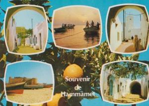 Hammamet Tunisia Stunning Multi View Photo 1980s Postcard