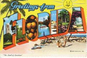 Greetings From Florida FL Large Letter Curt Teich c1978 Postcard D26