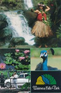 Waimea Falls Park, Haleiwa HI, Hawaii - Hula, Cliff Diving, Botanical Wonders