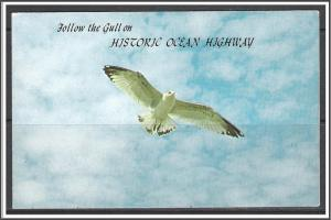 United States - Follow The Gull on Historic Ocean Highway - [MX-362]
