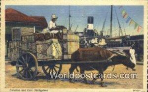 Caraboa & Cart Philippines Unused