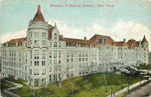 New York City~Museum of Natural History~1910 Postcard