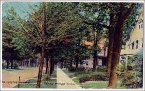 MI - So College Ave. Grand Rapids   (creases)