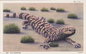 Gila Monster walking in the desert, 30-40s