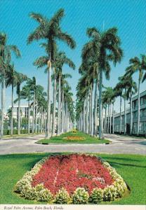 Florida Palm Beach Royal Palm Avenue