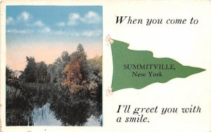Greetings From Summitville, New York Postcard
