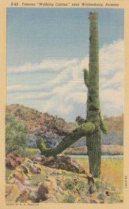 nburg , Arizona, 30-40s ; Walking Cactus