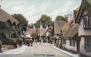England Shanklin The Old Village Street Scene
