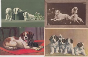 DOGS CHIENS REAL PHOTO ARTIST 75 CPA (mostly pre-1940)