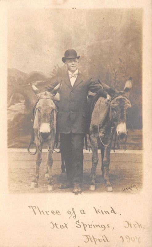 Hot Springs AR~Three of a Kind~A Man And His Two Jackasses~RPPC 1907 Postcard
