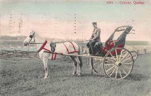 Horsedrawn Cart, Caleche, Quebec, Canada, Hand Colored Postcard, Used in 1907