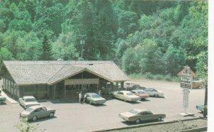 Oregon Mapleton Gingerbread Village Restaurant 1976 sk7191