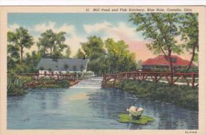 Ohio Castalia Mill Pond and Fish Hatchery Blue Hole Curteich