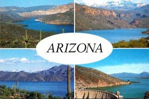 Arizona Apache Lake Roosevelt Lake Saguaro Lake Vista and Canyon Lake