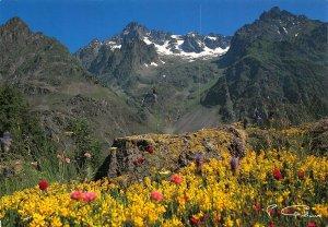 France Les Hautes Alpes Le Valgaudemar Massif de l'Olan Postcard