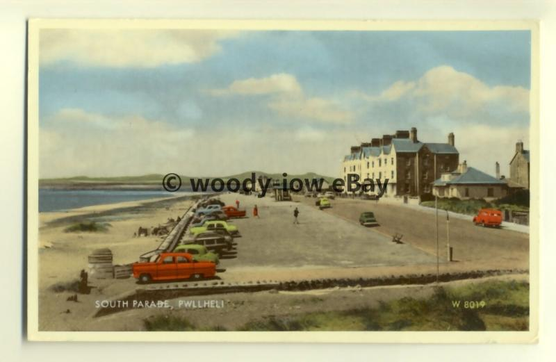 tp8037 - Wales - Looking along the South Parade of Pwllheli, c50/60s  - Postcard