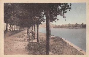 Duclair France Park Along Water Scenic View Antique Postcard J78752
