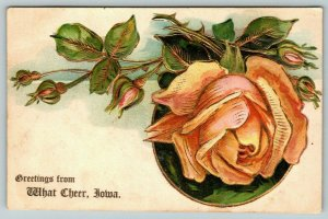 Greetings From What Cheer Iowa~Pink Rose~Gold Leaf Embossed~c1910 Postcard