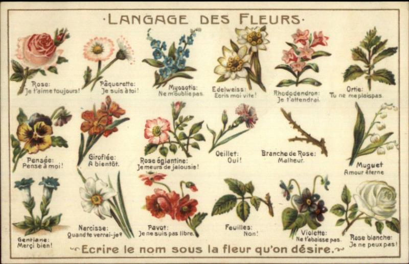 French Language of Flowers Nicely Embossed Atelier H Guggenheim Postcard