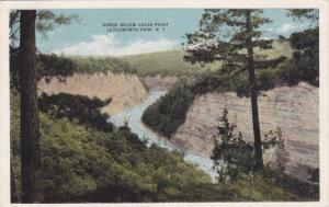 Gorge Below Coles Point, Letchworth Park, New York, 1900-1910s
