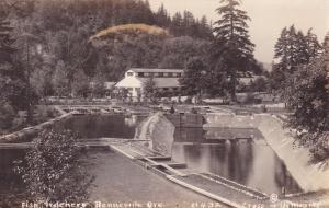 RP: BONNEVILLE, Oregon , 20-40s; Fish Hatchery