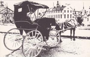 Horse Carriage, Sur la Place d'Armes, Quebec, Canada, 00-10's