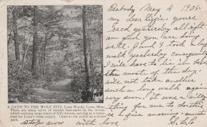 Path to Wolf Pits in Lynn Woods Lynn Essex County MA Massachusetts pm 1905 UDB