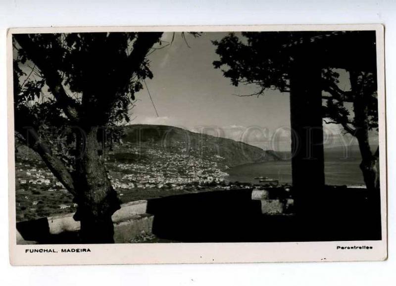 192353 PORTUGAL MADEIRA FUNCHAL Vintage photo postcard