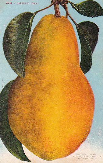 Bartlett Pear Fruit by Edward Mitchell