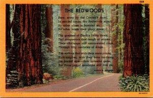 California Poem Of The Redwoods
