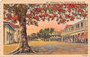 Flamboyant Tree, Victoria Parade Suva Fiji Writing on back