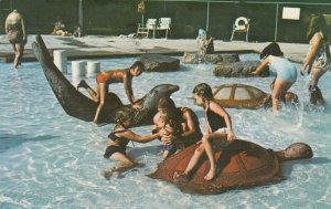 EUREKA, Missouri, 1980 ; Top Notch Camp Resort