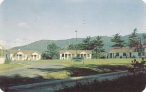 ASHEVILLE , North Carolina , PU-1950 ; Buena Vista Motel