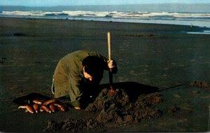 Oregon Clam Digging