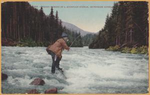 Trout Fishing in Mountain Stream, Skykomish River, Washington