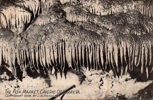 Virginia Luray Caverns The Fish Marker
