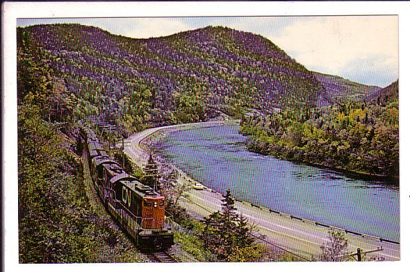 Canadian National Train Newfie Bullet, Humber River Valley, Newfoundland,