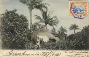 guatemala, C.A., Rancho, Native Hut, Palm Tree (1903) Valdeavellano Postcard