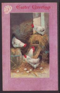 Easter Greetings,Chicks Postcard
