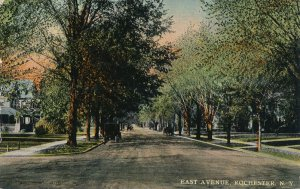 Horse and Carriage Traffic on East Avenue - Rochester NY New York - pm 1915 - DB