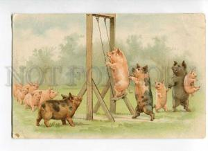 264726 RUSSIA Charming PIG on Swing PARK Vintage LITHO PC