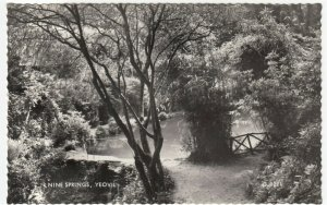 Somerset; Nine Springs, Yeovil RP PPC By Valentines, Unposted, c 1950's